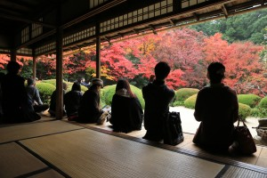 a fall season of Shisen-do garden, kyoto
